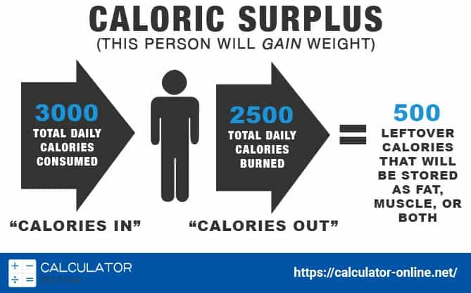 calories to lose weight